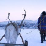 Norwegia: Tromsø – informacje praktyczne 2017