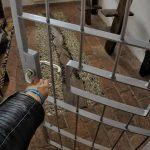 Słowenia: o tym, jak spędziłam noc w więzieniu