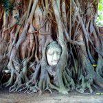 Tajlandia: Ayutthaya – atrakcje dawnej stolicy Syjamu