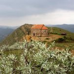 Gruzja: klasztor Dawid Garedża i widok na Azerbejdżan