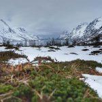 Norwegia: Tromsø – gdzie fiordy jedzą z ręki?