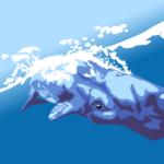Norwegia: Tromsø – zobaczyć wieloryba, który umrze